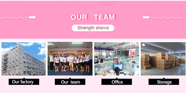 earphone supplier's team