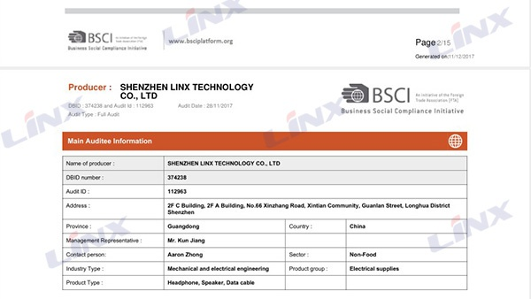 BSCI Audit Summary Report 3